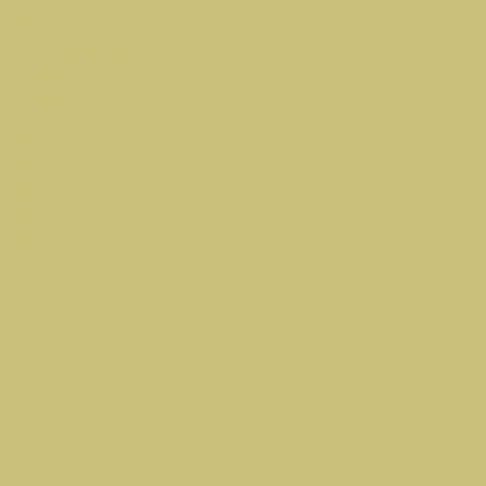 Colorama Hintergrundkarton - Fern