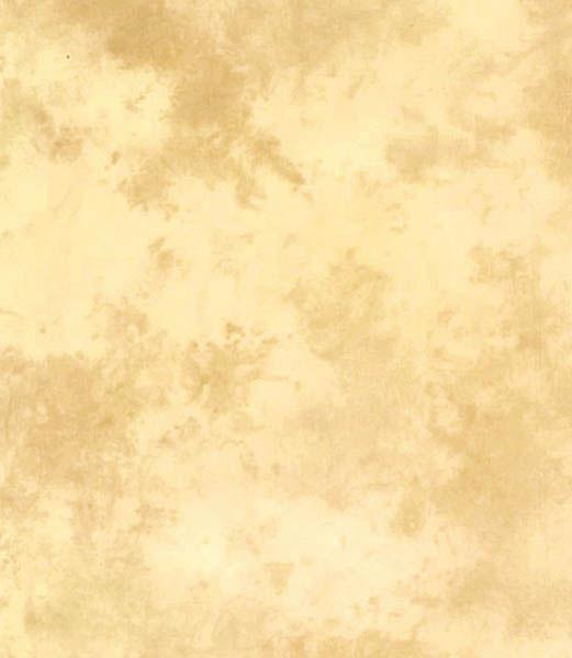 Lastolite Ezycare – faltenfrei spannbarer Stretch-Stoffhintergrund 3 x 7m ARIZONA